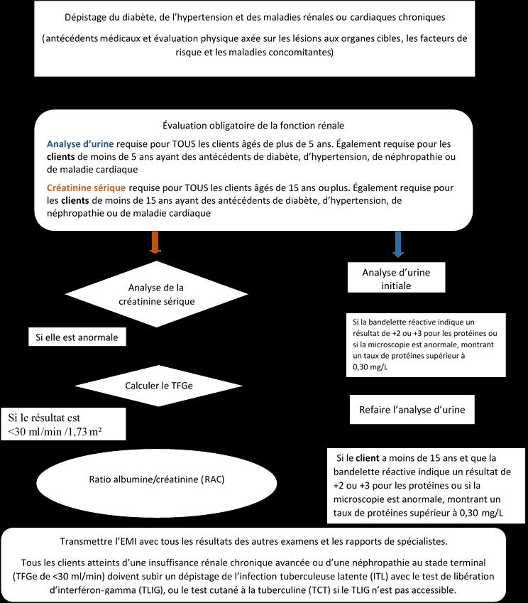 Processus de dépistage de datation en ligne