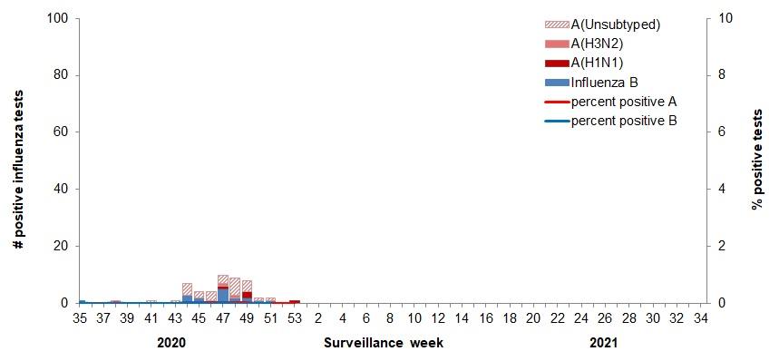 FluWatch report: January 3, 2021 to January 9, 2021 (week ...