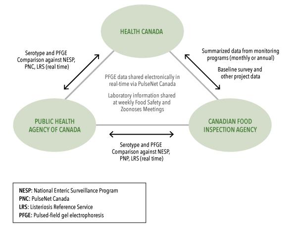 serotyping diet health plan