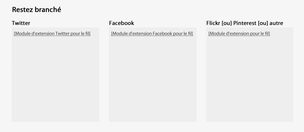 Capture d'écran illustrant le modèle de widget des flux de médias sociaux dans le site Canada.ca. Plus de détails au sujet de ce graphique se retrouvent dans le texte entourant l'image.