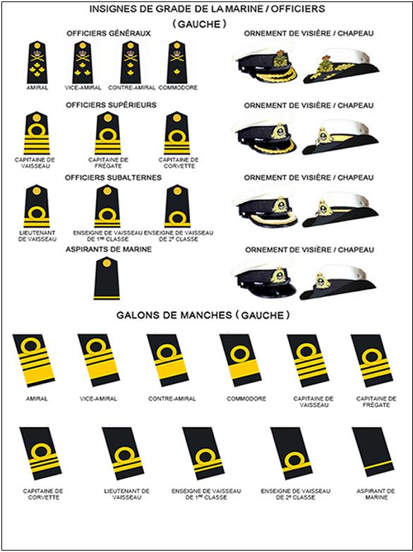 Instructions Sur La Tenue Section 2 Insignes De Grade Et