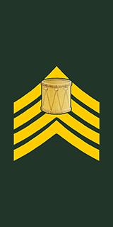 Army Captain Insignia