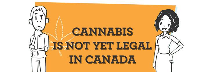 canada.ca - Service Canada - Cannabis in Canada
