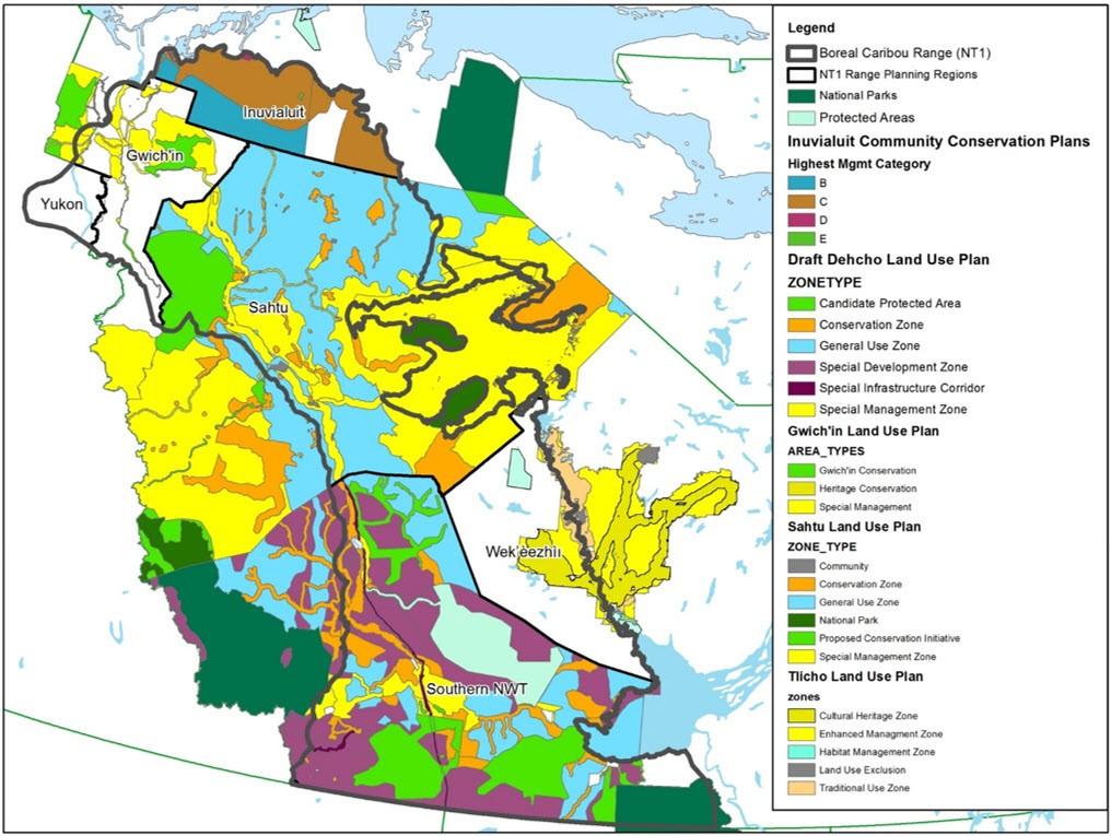 Woodland Caribou Boreal Population In Northwest