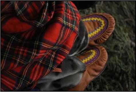 Woodland caribou (Rangifer tarandus caribou) Aboriginal Traditional ... 665942dadf29