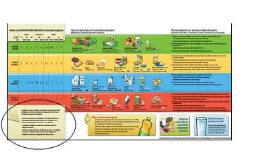 Sc Site Food Gov Uk