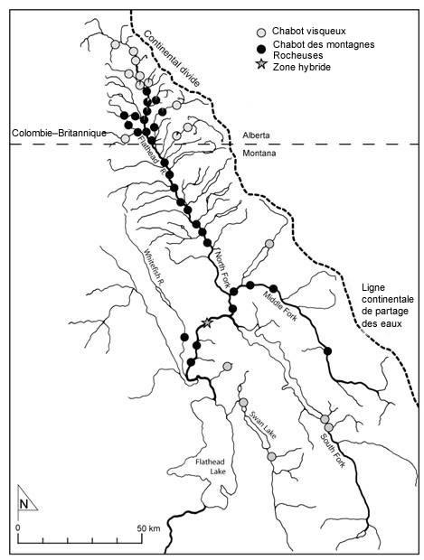 Mountain Bike sites de rencontre