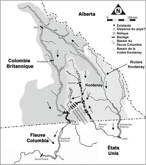 Vitesse datant Columbia Maryland