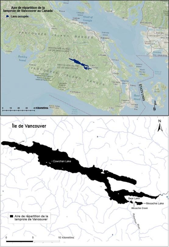 Vancouver île aînés datant