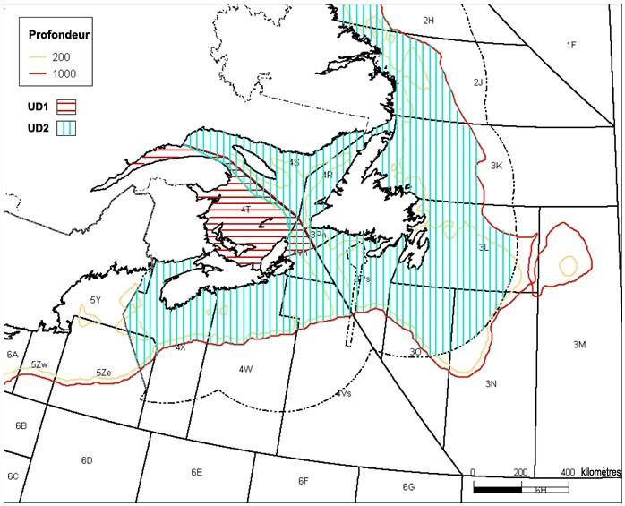 Merluche blanche (Urophycis tenuis) : évaluation et rapport