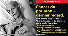 le tabagisme et le cancer du poumon. Black Bedroom Furniture Sets. Home Design Ideas