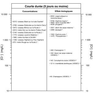 annuaire des rencontres editions lazer newfoundland and labrador